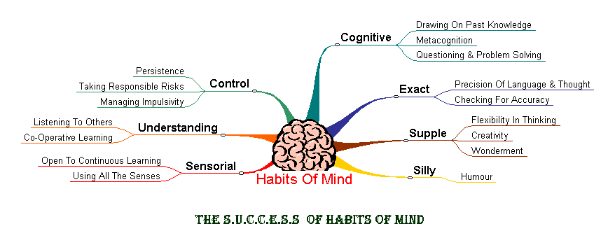 the success of habits of mind.png